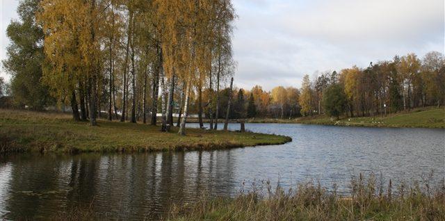 Экскурсии в парк, к истокам реки Вяз